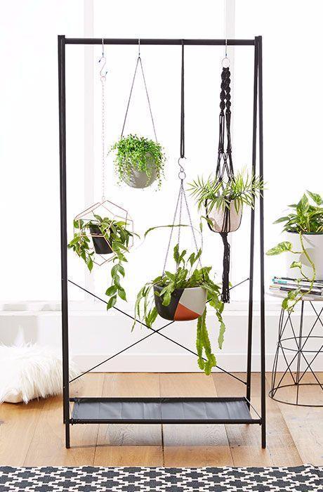 suspendre ses plantes sur un portant