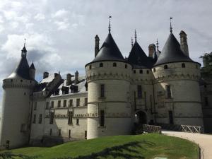 Domaine de Chaumont-sur-Loire – Centre d'Arts et de Nature- Mars 2018