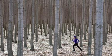 Footing et Froid sont-ils incompatibles ?