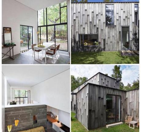 Architecture : Forest House