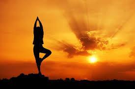 Les origines ascétiques du yoga postural