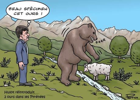 Nicolas Hulot et les ours
