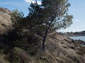 PNRM idées balades nature autour Narbonne