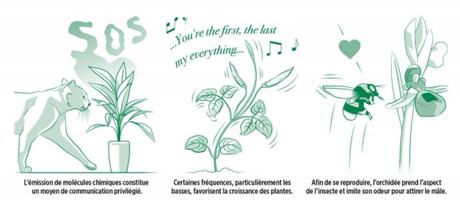 Intelligence des plantes_2