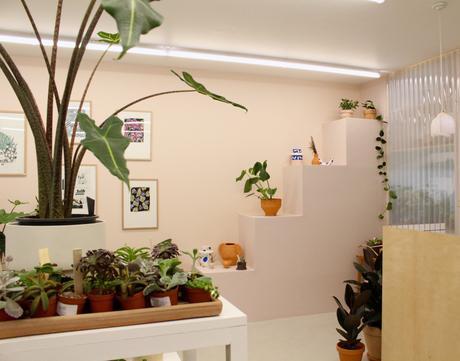 Coup de coeur pour la boutique végétale « Leaf »