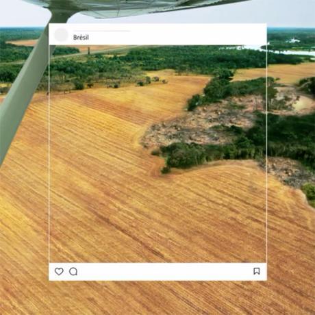 WWF Trolle instagram pour nous sensibiliser dans cette audacieuse campagne de publicité