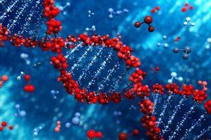 [ #RGPD ] Test ADN interdit en France, autorisé ailleurs