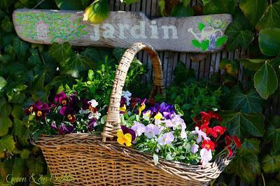 Instantanés du jardin
