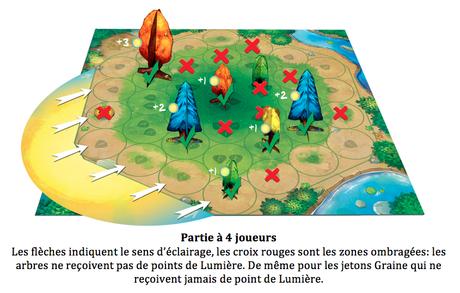 Photosynthesis, l'appel de la forêt chez Blue Orange !