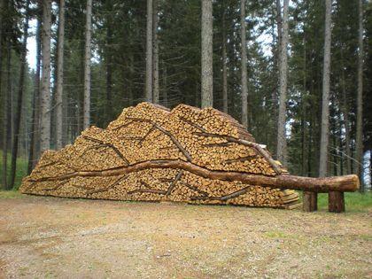 L'art et le stockage du bois de chauffage