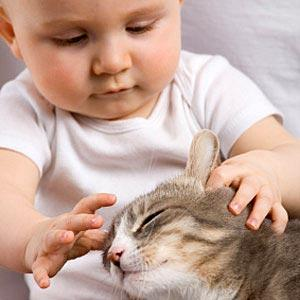 ANTI-PUCES POUR ANIMAUX, DANGER CHEZ L'ENFANT