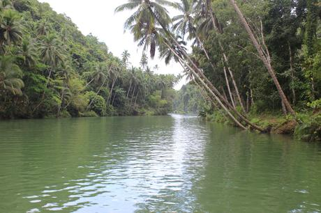 Croisière sur la rivière Loboc