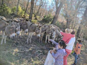 Découvrir la Provence 'Hors Saison' en famille.