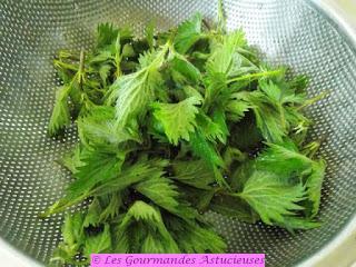 Pesto aux orties, asperges du jardin et fleurs de chou (Vegan)