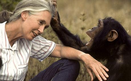 Journée de la terre avec Jane Goodall