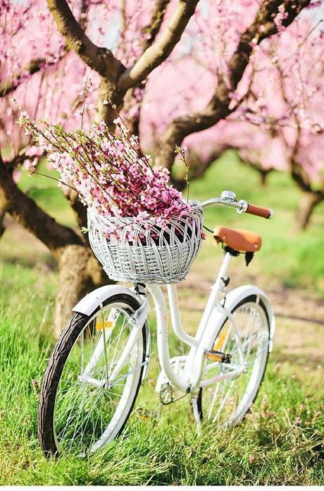 Les 10 raisons qui font que j'aime le printemps