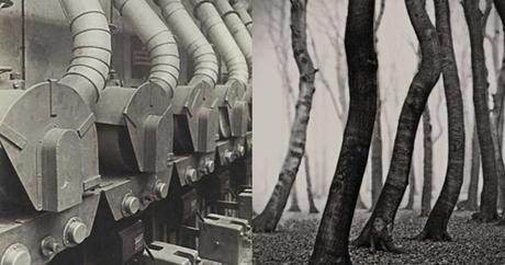 albert-renger-patzsch,photography,straight-photography,nouvelle-objectivité,exhibition,museum,jeu-de-paume,les-choses,neue-sachlichkeit,dyptique