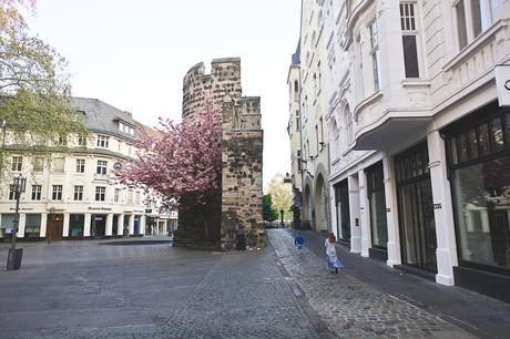 Les fleurs de Bonn