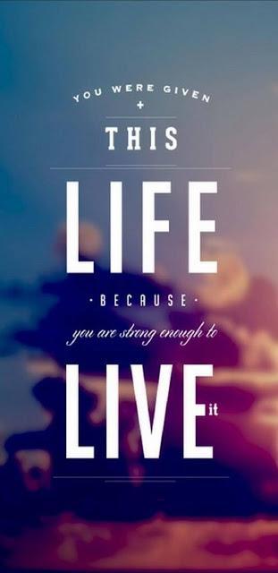 La Vie, Ta vie...