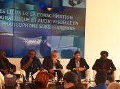 L'état salles diffusion Afrique francophone subsaharienne
