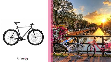 ✈️ Trip du Vietnam à Amsterdam