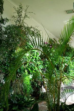 salzbourg city guide schloss château mirabell jardins serres