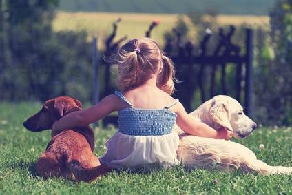 C'est véritablement le développement d'une intuition qui permet aux jeunes enfants, sans indication aucune des parents de comprendre que tout un domaine est la propriété de quelqu'un, et à partir de là de déduire que tout ce qui appartient à ce domaine appartient à cette personne.