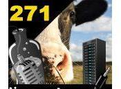 L'apéro Captain #271 virtualisation boite meuhhhh