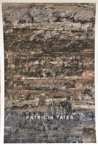 Galerie LEE  exposition Patricia TAIEB  14/30 Juin 2018