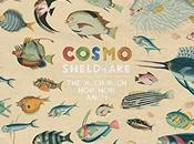 Cosmo Sheldrake Much