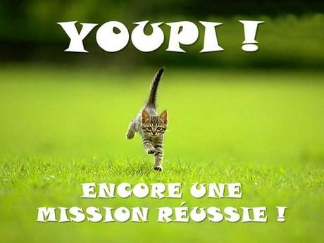 chaton youpi encore une mission réussie