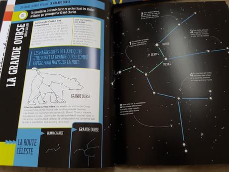 Feuilletage d'albums #75 : Lectures ♥ ♥ ♥ Le doudou des bois - Les animaux globe-trotteurs - Le grand livre pour observer les étoiles - Le professeur Astrocat présente le système solaire