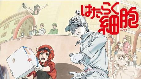[Vidéo] Nouveau trailer pour l'adaptation animée du manga Les Brigades Immunitaires (Hataraku Saibô)