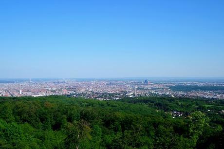 vienne wienerwald forêt viennoise