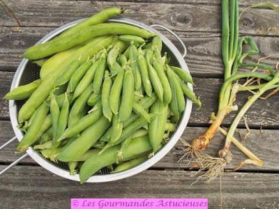 Galettes aux petits pois, fèves et sarrasin (Vegan)