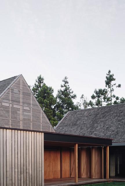 Nouvelle Zélande / Une maison dans la forêt /