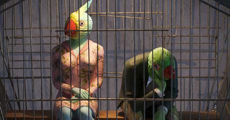 MONTPELLIER – La Conférence des Oiseaux – du 22 au 30 juin