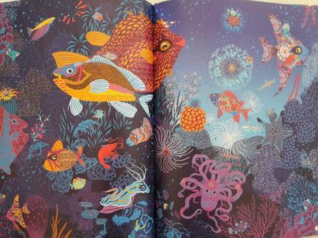 Cachés dans la mer de Peggy Nille ♥ ♥ ♥ Cherche et trouve