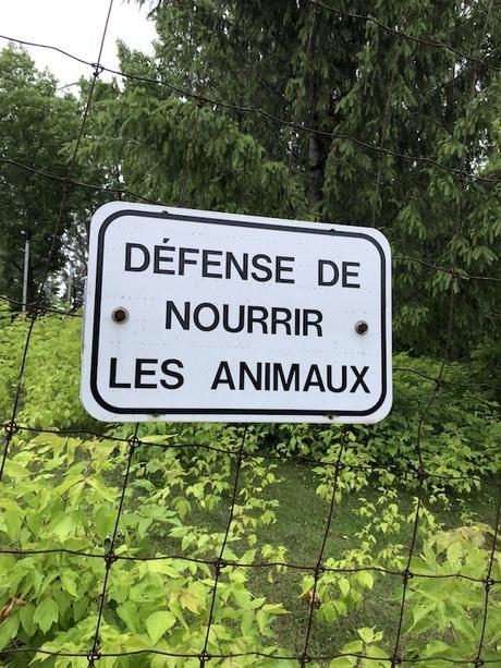 La Saint-Jean à Laval : si t'arrives de la Rive-Sud, ça te fait deux ponts à traverser