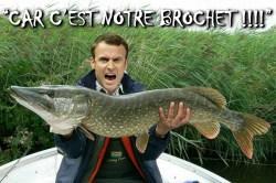 Macron : des réformes à pas de fourmis et des économies inexistantes