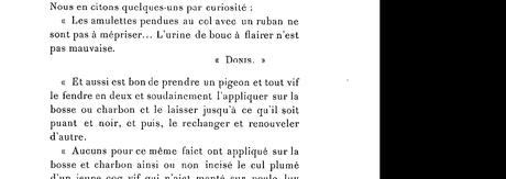 pigeon et coq au cul plumé