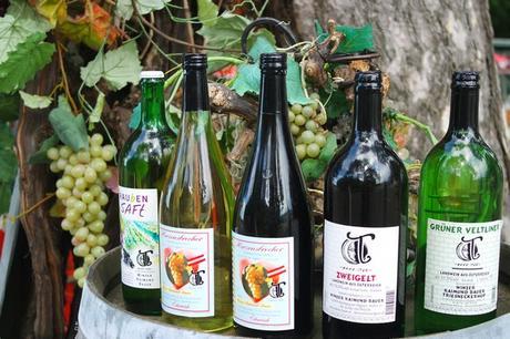 vienne vins