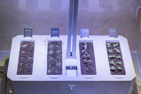 potager veritable avis test jardin interieur une semaine