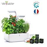 Potager Véritable SMART Arctic White - Technologie ADAPT' LIGHT - Jardin autonome d'intérieur Made in France (Blanc/Gris argenté)