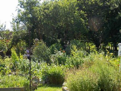 Des visiteurs au jardin : un nouveau groupe envoyée par la FREDON