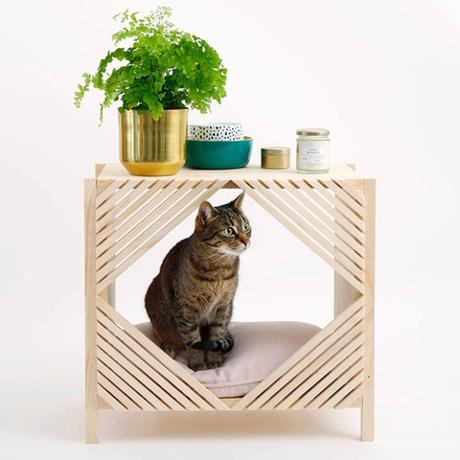 [DIY] : Créations design pour Chiens et Chats