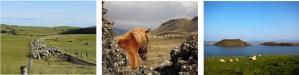 Island Tours – Vivre le ramassage des moutons comme un vrai fermier islandais !