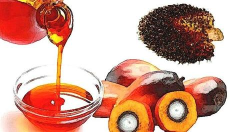 Surtaxer l'huile de palme en France ?