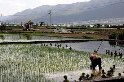 Dali : promenade au lac Erhai