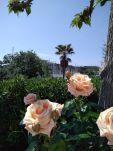 blog-mariage-sud-escapade-week-end-nature-var-cote-dazur